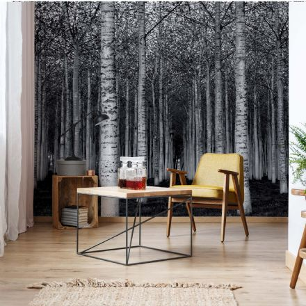 "Easy to Install wallpaper Black & White ""Moody Forest"""